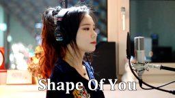 lirik lagu shape of you dan terjemahan
